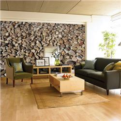 Environmental Graphics Pebbles Wall Mural