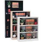 "Image of Sandusky Lee® ""Storage in a Snap"" Bookcases"