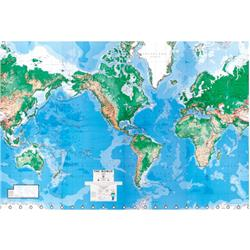 Environmental Graphics World Map Wall Mural