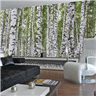 Image of Environmental Graphics Birches Wall Mural