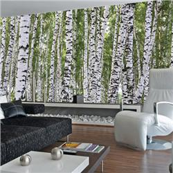 Environmental Graphics Birches Wall Mural