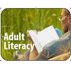 Brodart Adult Literacy Classification Picture Labels (250)