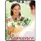 Image of Brodart Romance Classification Picture Labels (250)