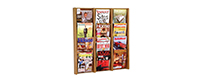 Wall Mount Literature Display